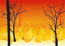 Incendios forestales Fotos de archivo libres de regalías