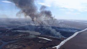 Incendios fuera de control en el campo, extensión incontrolada del fuego para la tierra con el humo que sube al cielo peligroso p almacen de metraje de vídeo