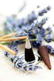 Incense cones Stock Image