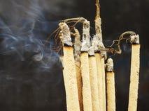 Incense il bastone Immagine Stock