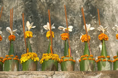 Incense and religious offers. Fresh flowers and incenses are the most used offers in Buddhism religion Royalty Free Stock Images