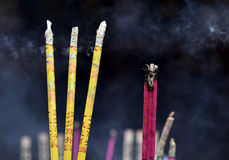 Incense with smoke in incense burner. At Shrine in China Royalty Free Stock Image