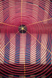 Incense spiral. Giant incense spiral hanging on a vietnamese temple Stock Photos