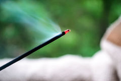 Incense stick, green background Stock Photography