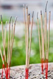 Incense sticks in ashes bucket Royalty Free Stock Images