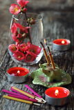 Incense sticks and blossoming branch Royalty Free Stock Photo