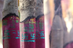 Incense sticks. Burning incense sticks in temples Stock Photos