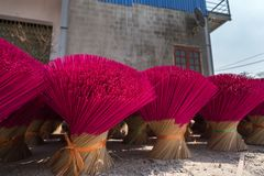 Incense sticks drying outdoor in north of Vietnam Royalty Free Stock Image