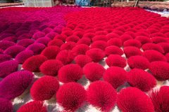 Incense sticks drying outdoor in north of Vietnam royalty free stock photography