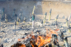 Incense sticks (joss sticks) burning in Incense furnace at Senso-ji Temple Royalty Free Stock Photography
