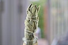 Incense of white salvia. White salvia incense. Salvia ritual concept. White sage, scared sage, california sage, bee sage Royalty Free Stock Photos