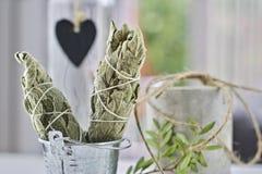 Incense of white salvia. White salvia incense. Salvia ritual concept. White sage, scared sage, california sage, bee sage Royalty Free Stock Image