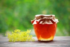 Inceppamento casalingo della frutta nel barattolo Immagine Stock Libera da Diritti