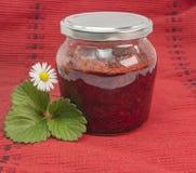 Inceppamento di fragole Fotografie Stock Libere da Diritti