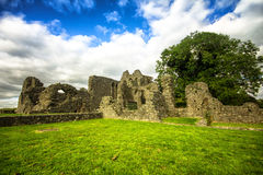 Inch Abbey Royalty Free Stock Photo