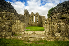 Inch Abbey Royalty Free Stock Photography
