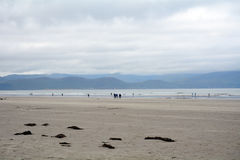 Inch Beach, Ireland Stock Images