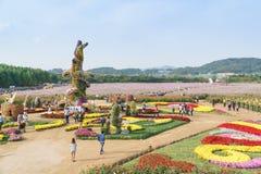 INCHEON, KOREA - OCTOBER 01, 2014: Incheon chrysanthemum flowers. Incheon chrysanthemum flowers festival in dream park stock photography