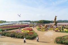 INCHEON, KOREA - OCTOBER 01, 2014: Incheon chrysanthemum flowers. Incheon chrysanthemum flowers festival in dream park royalty free stock photo