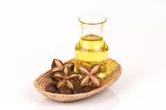 Inchi de Sacha, inchi de Sacha, Sacha mani, huile d'arachide d'Inca des graines et Sacha images libres de droits