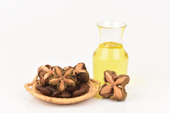 Inchi de Sacha, inchi de Sacha, Sacha mani, huile d'arachide d'Inca des graines et Sacha photos libres de droits