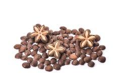 Inchi Sacha, sacha mani или семя арахиса inca звезды на белом backgr Стоковое Фото