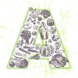 Inchiostri la frutta e le verdure disegnate a mano che contengono la vitamina A Fotografie Stock