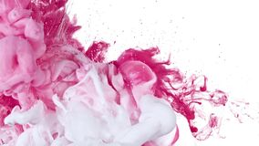 Inchiostro bianco e rosa in acqua Fotografia Stock Libera da Diritti