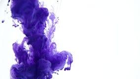 Inchiostro blu in acqua Movimento lento creativo Su una priorità bassa bianca stock footage