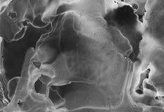Inchiostro dell'alcool, fondo astratto in bianco e nero acrilico fotografia stock libera da diritti