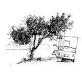 inchiostro della penna di schizzo di progettazione grafica della latifoglia Fotografia Stock Libera da Diritti