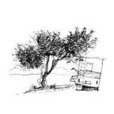 inchiostro della penna di schizzo di progettazione grafica della latifoglia Immagine Stock Libera da Diritti
