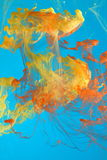 Inchiostro variopinto in liquido blu Fotografia Stock