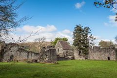 Inchmahome Priory Royalty Free Stock Image