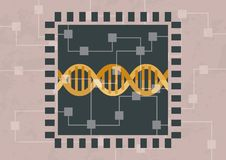 Incidendo e DNA di decodifica illustrazione di stock