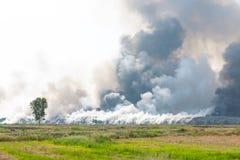 Incineração Waste Fotos de Stock