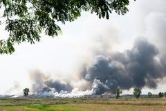 Incineração Waste Imagem de Stock