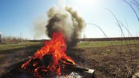 Incineración inútil metrajes