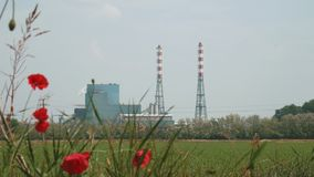 Incineration plant behind some poppies, focus shift.  stock video