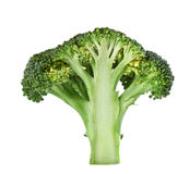Incision broccoli Stock Photo