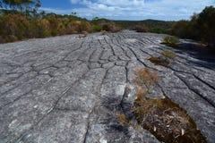 Incisione aborigena della roccia parco nazionale di inseguimento dell'Ku-anello-gai Il Nuovo Galles del Sud l'australia fotografia stock libera da diritti