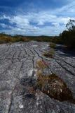 Incisione aborigena della roccia parco nazionale di inseguimento dell'Ku-anello-gai Il Nuovo Galles del Sud l'australia immagini stock libere da diritti