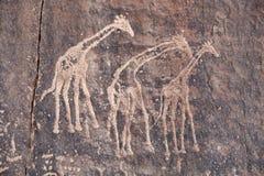 Incisione antica della roccia nel deserto di Sahara Fotografia Stock Libera da Diritti