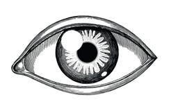 Incisione d'annata di tiraggio della mano di riferimento dell'occhio umano isolata su fondo bianco illustrazione vettoriale