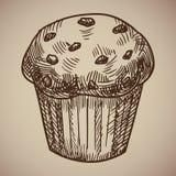 Incisione dei muffin Schizzo delizioso della pasticceria del cioccolato Menu dell'incisione per il ristorante Illustrazione di ve Fotografia Stock Libera da Diritti