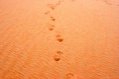 Inciso nella sabbia Immagine Stock