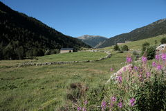Incles valley in Pyrenees Stock Photo