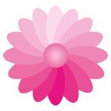 Inclinação da flor Foto de Stock