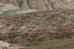 A inclinação da montanha coberta com a vegetação com listras vermelhas foto de stock royalty free
