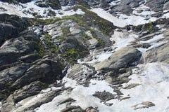 Inclinação de montanha do verão Imagens de Stock